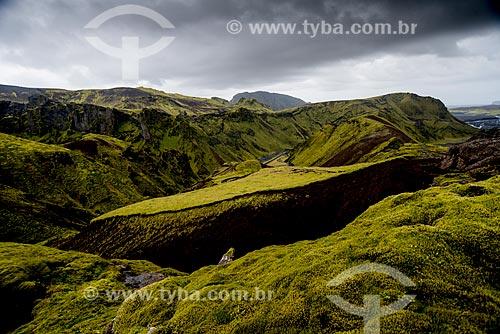 Paisagem na região da vila Vík í Mýrdal  - Southern Region - Islândia