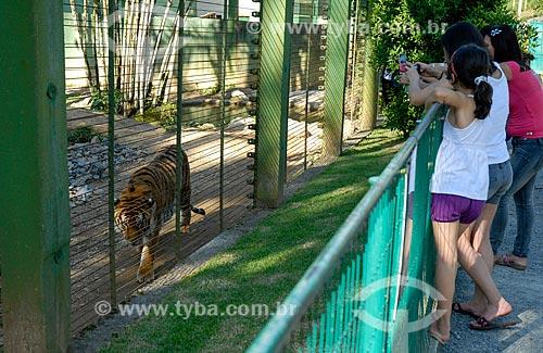 Tigre (Panthera tigris) no Jardim Zoológico de Pomerode  - Pomerode - Santa Catarina (SC) - Brasil