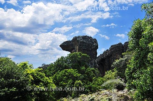O Camelo - formação de arenito do Parque Estadual de Vila Velha  - Ponta Grossa - Paraná (PR) - Brasil