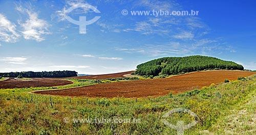 Vista de solo arado para plantio a partir da Rodovia BR-476 - também conhecida como Rodovia do Xisto  - União da Vitória - Paraná (PR) - Brasil
