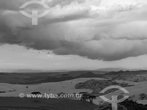 Campos de Cima da Serra  - São Francisco de Paula - Rio Grande do Sul (RS) - Brasil