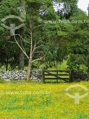 Porteira de fazenda  - São Francisco de Paula - Rio Grande do Sul (RS) - Brasil