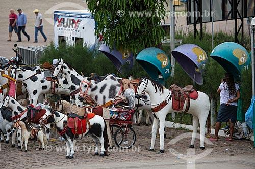 Cavalos artesanais usados para fotografias de recordação na Praça dos Romeiros - em frente à Basílica Santuário de Nossa Senhora das Dores  - Juazeiro do Norte - Ceará (CE) - Brasil