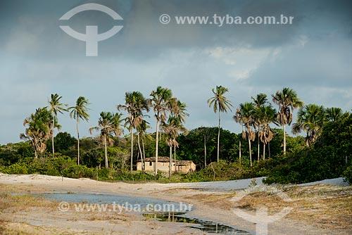 Casa de pau-a-pique na Vila de Santo Amaro - próximo ao Parque Nacional dos Lençóis Maranhenses   - Santo Amaro do Maranhão - Maranhão (MA) - Brasil