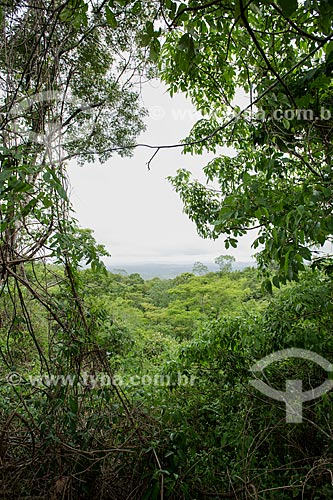 Vista geral da Floresta Nacional do Araripe-Apodi  - Nova Olinda - Ceará (CE) - Brasil