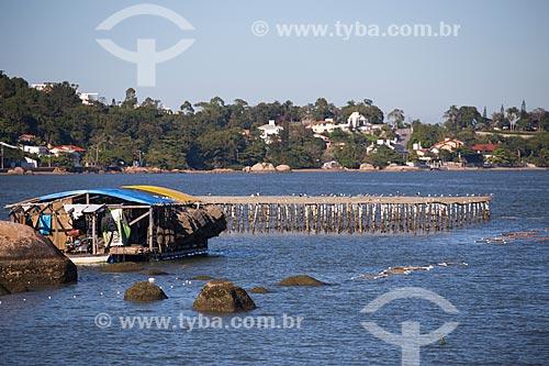 Criação de ostras na Baía Norte  - Florianópolis - Santa Catarina (SC) - Brasil