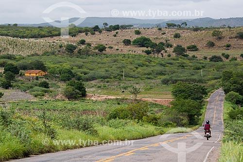 Vista da vegetação do cerrado na Rodovia CE-292 próximo à Nova Olinda  - Nova Olinda - Ceará (CE) - Brasil