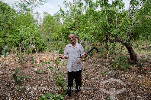 Agricultura orgânica de manejo florestal na Caatinga - Sítio Patos  - Nova Olinda - Ceará (CE) - Brasil
