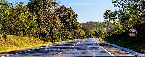 Rodovia BR-369 próximo à cidade de Aguanil  - Aguanil - Minas Gerais (MG) - Brasil
