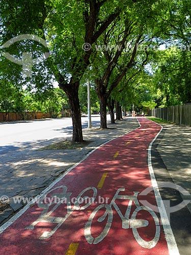 Ciclovia na Avenida Loureiro da Silva  - Porto Alegre - Rio Grande do Sul (RS) - Brasil