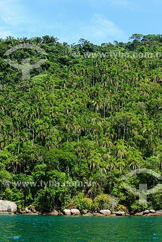 Palmito - Saco de Mamanguá  - Paraty - Rio de Janeiro (RJ) - Brasil