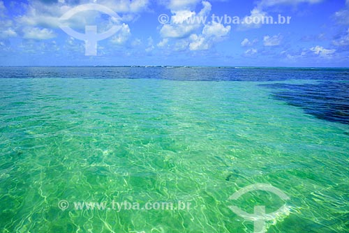 Piscina natural na Praia do Patacho - Rota Ecológica de Alagoas  - Porto de Pedras - Alagoas (AL) - Brasil