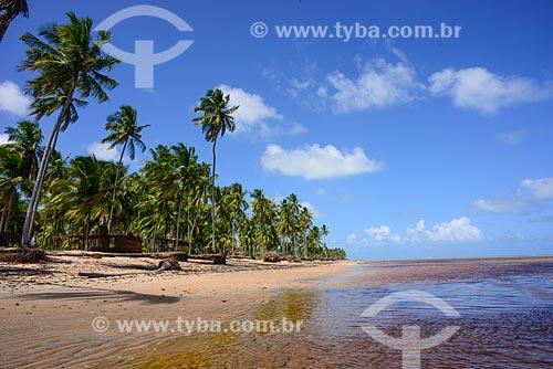 Vista da orla da Praia do Patacho na Rota Ecológica de Alagoas  - Porto de Pedras - Alagoas (AL) - Brasil