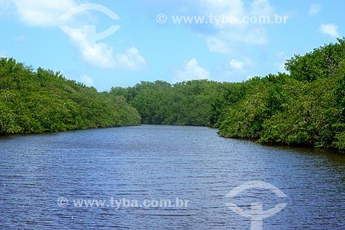 Vista do Rio Tatuamunha na área do Projeto Peixe-boi - Rota Ecológica de Alagoas  - Porto de Pedras - Alagoas (AL) - Brasil