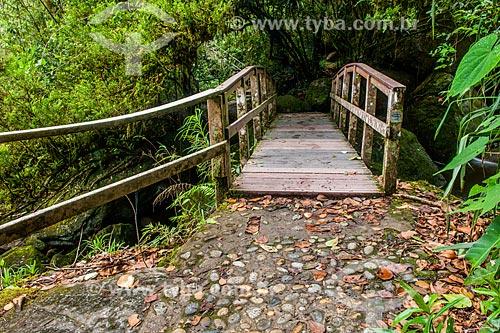 Ponte de madeira na trilha para a Cachoeira Véu da Noiva no Parque Nacional de Itatiaia  - Itatiaia - Rio de Janeiro (RJ) - Brasil