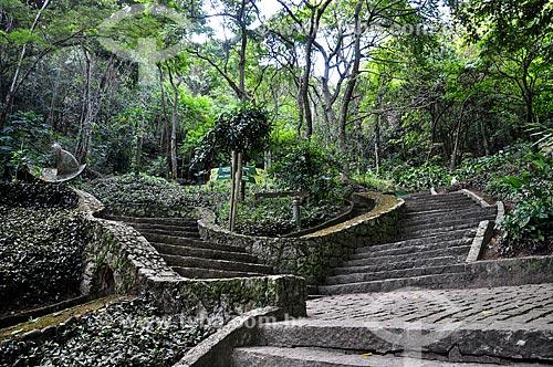Trilha no Parque Natural Municipal da Catacumba  - Rio de Janeiro - Rio de Janeiro (RJ) - Brasil