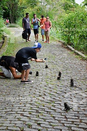 Turistas fotografando mico-estrela (Callithrix penicillata) na trilha da Área de Proteção Ambiental do Morro do Leme  - Rio de Janeiro - Rio de Janeiro (RJ) - Brasil
