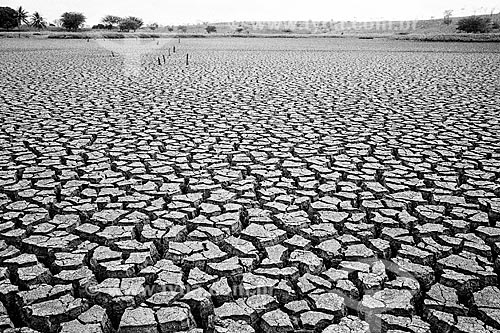 Solo rachado durante a seca  - Euclides da Cunha - Bahia (BA) - Brasil