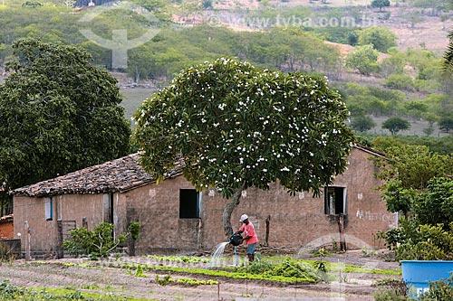 Homem regando horta no interior do estado de Alagoas  - Alagoas (AL) - Brasil