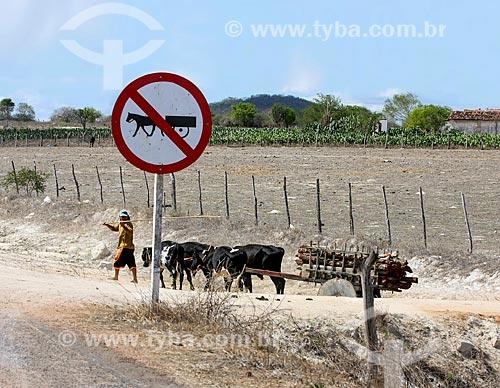 Homem conduzindo carro de boi próximo à estrada no interior do estado de Alagoas  - Alagoas (AL) - Brasil
