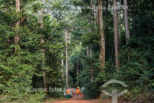Técnicos do Instituto Floresta Tropical (IFT) no Centro de Manejo Florestal Roberto Bauch  - Paragominas - Pará (PA) - Brasil