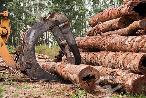 Transporte de troncos no Centro de Manejo Florestal Roberto Bauch  - Paragominas - Pará (PA) - Brasil