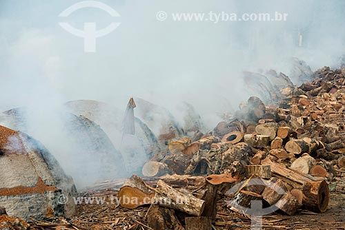 Carvoaria produzindo carvão para siderurgia com sobras de madeira de manejo florestal  - Paragominas - Pará (PA) - Brasil