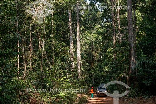 Técnico do Instituto Floresta Tropical (IFT) próximo à árvores reflorestadas  - Paragominas - Pará (PA) - Brasil