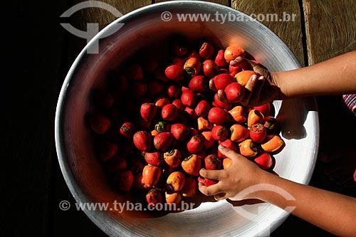 Bacia com o fruto do Pupunha (Bactris gasipaes)  - Manaus - Amazonas (AM) - Brasil