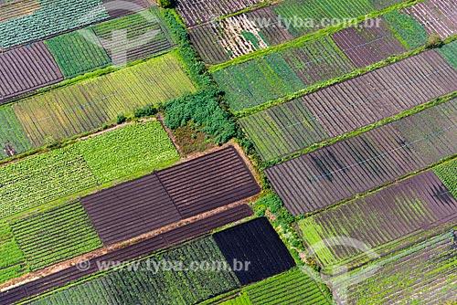 Foto aérea de hortas no cinturão verde de Mogi das Cruzes  - Mogi das Cruzes - São Paulo (SP) - Brasil