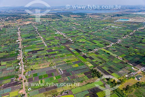 Foto aérea de hortas no cinturão verde de Mogi das Cruzes com a Represa Taiaçupeba ao fundo  - Mogi das Cruzes - São Paulo (SP) - Brasil
