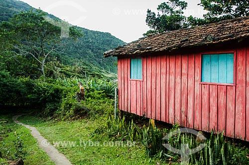 Casa de madeira colorida na comunidade da Praia do Saquinho  - Florianópolis - Santa Catarina (SC) - Brasil
