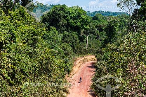 Estrada de Terra na Floresta Nacional do Tapajós  - Belterra - Pará (PA) - Brasil