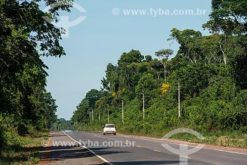 Trecho da BR-163 entre as cidades de Belterra e Santarém  - Belterra - Pará (PA) - Brasil