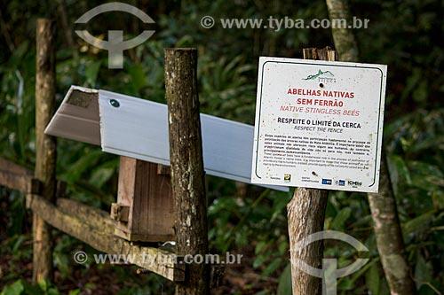Meliponário - Colônias de abelhas sem ferrão na Floresta da Tijuca - Parque Nacional da Tijuca  - Rio de Janeiro - Rio de Janeiro (RJ) - Brasil