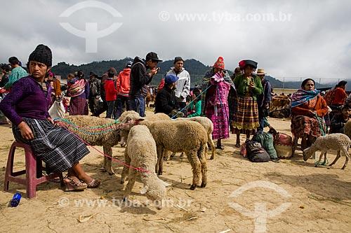 Cordeiros à venda no Mercado de San Francisco El Alto  - San Francisco El Alto - Departamento de El Quiché - República de Guatemala