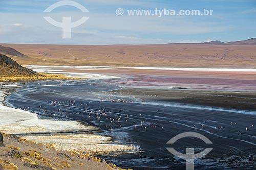 Lagoa no Deserto Siloli  - Departamento Potosí - Bolívia