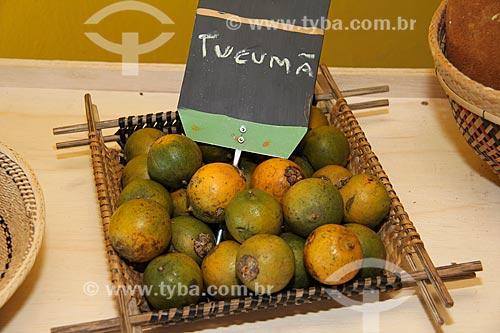 Detalhe do fruto do tucumã (Astrocaryum aculeatum) - também conhecida como Acaiúra ou Tucum  - Parintins - Amazonas (AM) - Brasil