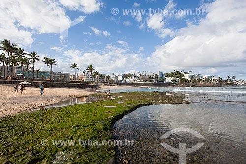 Corais na orla da Praia de Ondina durante a maré baixa  - Salvador - Bahia (BA) - Brasil