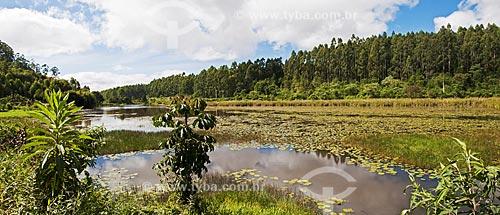 Pequeno lago e vegetação de mata atlântica em Caxixe Frio  - Venda Nova do Imigrante - Espírito Santo (ES) - Brasil