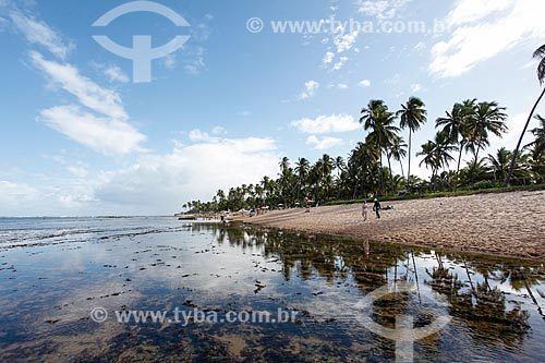 Orla da Praia da Pedra do Chapéu  - Mata de São João - Bahia (BA) - Brasil