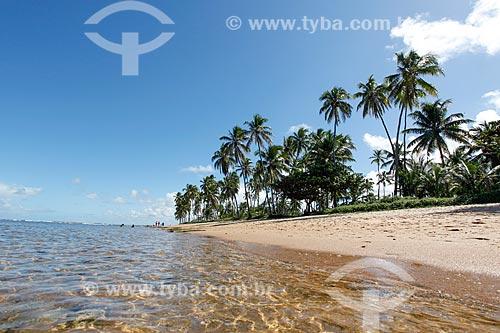 Orla da Praia do Portinho de baixo  - Mata de São João - Bahia (BA) - Brasil