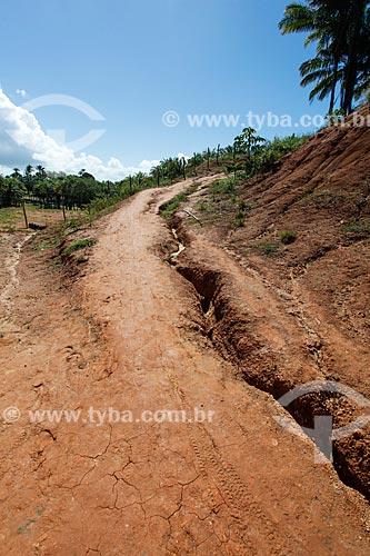 Estrada de terra com erosão pluvial  - Cairu - Bahia (BA) - Brasil