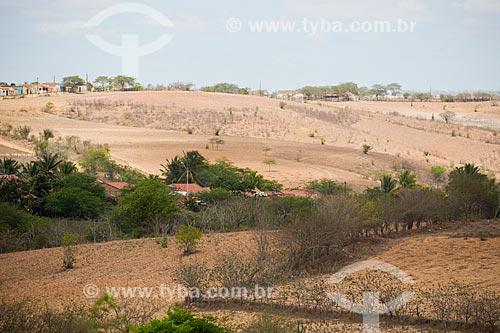Paisagem de caatinga no Planalto da Borborema  - Arara - Paraíba (PB) - Brasil