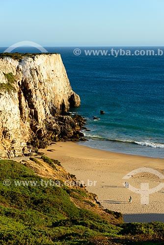 Vista da orla da Praia do Beliche - parte do Parque Natural do Sudoeste Alentejano e Costa Vicentina  - Concelho de Vila do Bispo - Distrito de Faro - Portugal