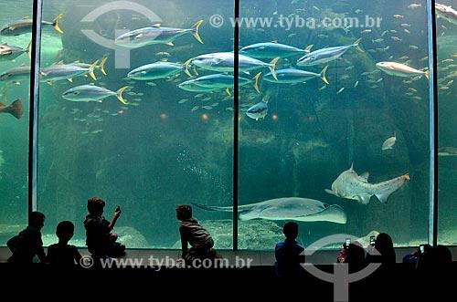 Crianças no Two Oceans Aquarium (Aquário Dois Oceanos)  - Cidade do Cabo - Província do Cabo Ocidental - África do Sul