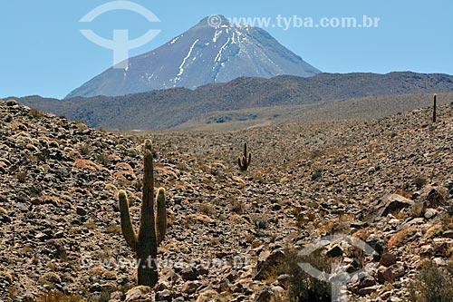 Vista do deserto do Atacama com o Vulcão Licancabur ao fundo  - San Pedro de Atacama - Província de El Loa - Chile