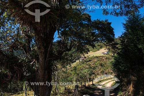 Estrada de Terra no Vale das Cruzes  - Resende - Rio de Janeiro (RJ) - Brasil