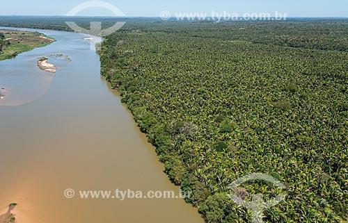 Foto aérea do Rio Parnaíba em área de Mata dos Cocais  - Timon - Maranhão (MA) - Brasil