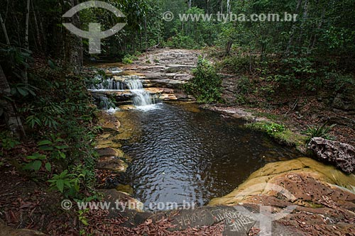 Vista da Cachoeira da Sussuarana  - Presidente Figueiredo - Amazonas (AM) - Brasil
